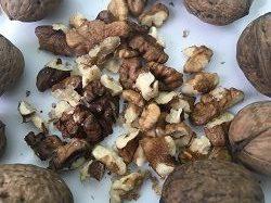 zakupaem gretskie orehi kamenskoe